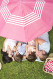 Overhead View Of Family Enjoying Picnic Together Stock Photos
