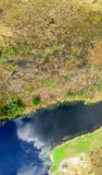 Overhead view of Florida Everglades Swamp - USA Royalty Free Stock Image