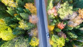 Overhead view of foliage trees and road in New England.  stock photo