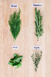 Overhead view of fresh herbs with names on wooden board Stock Image