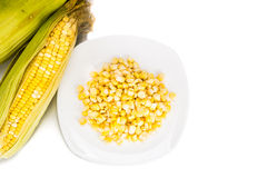 Overhead view fresh maize corn cob and kernels on plate Royalty Free Stock Photos