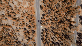 Overhead view of mountain road across forest Royalty Free Stock Photo
