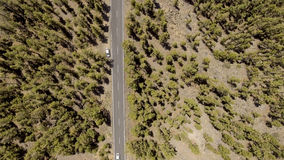 Overhead view of mountain road through trees Royalty Free Stock Image