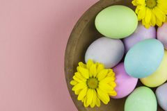 Overhead view of pastel painted easter eggs with daisies in a rustic wooden bowl on pink background royalty free stock image