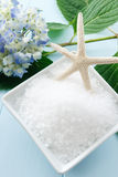 Overhead view of sea salt bath scrub Stock Images