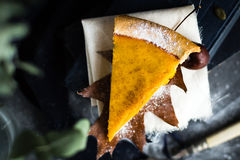 Overhead View of Thanksgiving Pumpkin Pie sprinkled with Icing Sugar in Autumn Scene stock photo