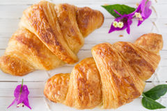 Overhead view of two fresh croissant Stock Image