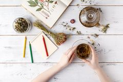 Overhead view of various sorts of tea. Flavoured with Assorted Herbs, an apple, rose with a teapot and a teacup on a rustic table royalty free stock photos