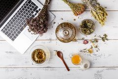 Overhead view of various sorts of tea. Flavoured with Assorted Herbs, an apple, rose with a teapot and a teacup on a rustic table royalty free stock photography