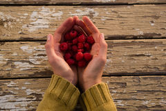 Overhead view of woman holding raspberries. At table Stock Photography