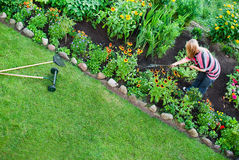 Overhead view on women in garden Royalty Free Stock Photos
