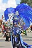 Overheerst door het kleurenblauw en achter ornamenten zoals jellyfi Stock Afbeelding