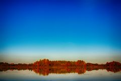 Overklig höst av gula träd med reflexion på sjön arkivfoton