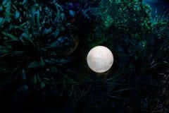 Overkligt fantasibegrepp - fullmåne som ligger i gräs Dekorerat foto Abstrakta felika bakgrunder Fotografering för Bildbyråer