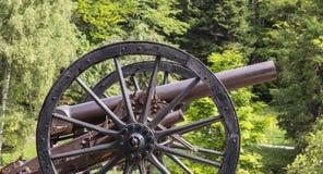 Overksam kanon i trädgård Fotografering för Bildbyråer
