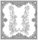 Overladen frame en ontwerpelementen Royalty-vrije Stock Fotografie