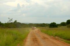 Overlanding sul Serengeti Fotografie Stock Libere da Diritti