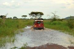 Overlanding sul Serengeti Immagine Stock Libera da Diritti
