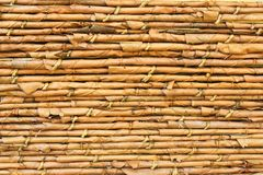 Overlap leaf background Royalty Free Stock Image