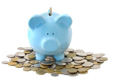 Overloaded Piggy Bank stock images