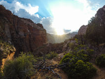 Overlook Canyon. Shot at Zion National Park in Utah Stock Images