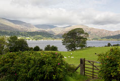 Overlook of Coniston Water in Lake District Royalty Free Stock Photo