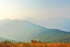 Overlook hazy mountains Stock Photography