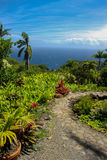 Overlook at Keanae Arboretum. Scenic ocean view at Keanae Arboretum with old stone path and tropical plants Stock Image
