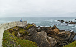 Overlook at Pigeon Point, California Royalty Free Stock Photography