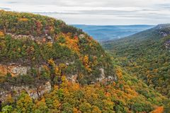 Overlook View At Cloudland Canyon State Park In Georgia. Cloudland Canyon State Park Overlook View During Autumn In Rising Fawn Georgia stock photography