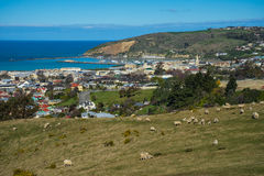 Overlook view of Oamaru town stock photography