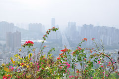 Overlooking the city of Zhuhai Stock Photos