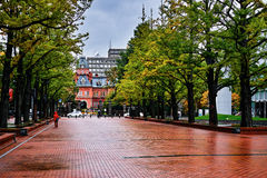 Overlooking The Former Hokkaido Government Office Royalty Free Stock Photo