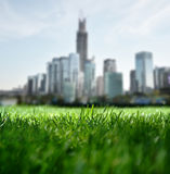 Overlooking the Future city. From grassland Royalty Free Stock Images