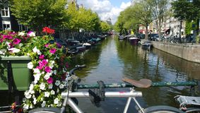 Overlooking one of the canals of Amsterdam in the Netherlands. The seat and the handlebars of the bike in the frame. Bright flowers and facades of houses Royalty Free Stock Photography