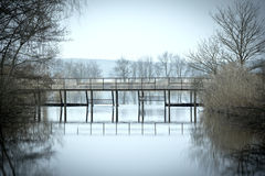 Overlooking a quiet lake in winter, Brandenburg Royalty Free Stock Photos