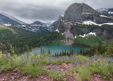 Overlooking Wildflowers and Grinnell Lake Royalty Free Stock Image