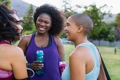 Overmaatse vrienden in gesprek na training stock foto's