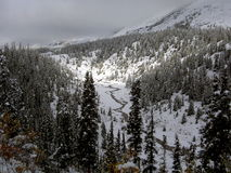 Overnight Snowfall. Snow covered valley in the Rocky Mountains, BC Canada Royalty Free Stock Photo