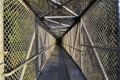 Overpass bridge protected by wire netting Stock Photography