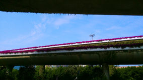 Overpass. Urban construction, architectural design, multidirectional communication overpass, the bridge on the cultivation of flowers are blooming, beautify the Stock Photography