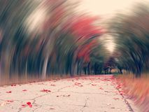 Overprocessed conceptual mysterious road in fallen forest gyration Stock Photo