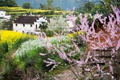 Overrall sikt av det lantliga landskapet landskap i för det wuyuan länet, jiangxi, porslin Royaltyfri Bild