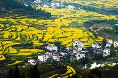 Overrall sikt av det lantliga landskapet landskap i för det wuyuan länet, jiangxi, porslin Royaltyfri Fotografi