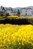 Overrall sikt av det lantliga landskapet landskap i för det wuyuan länet, jiangxi, porslin Arkivfoton