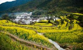 Overrall sikt av det lantliga landskapet landskap i för det wuyuan länet, jiangxi, porslin Arkivbilder