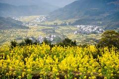 Overrall sikt av det lantliga landskapet landskap i för det wuyuan länet, jiangxi, porslin Arkivfoto