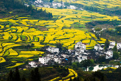 Overrall View Of Rural Landscape In Wuyuan County, Jiangxi Province, China Royalty Free Stock Photography