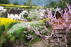 Overrall view of rural landscape in wuyuan county, jiangxi province, china Royalty Free Stock Image