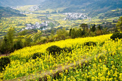 Overrall view of rural landscape in wuyuan county, jiangxi province, china Stock Photo